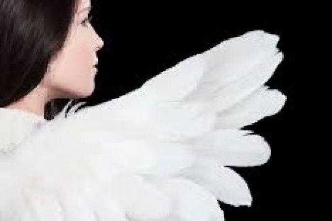 """Про види насильства та методологію """"Крила"""" говорили в Полтаві"""